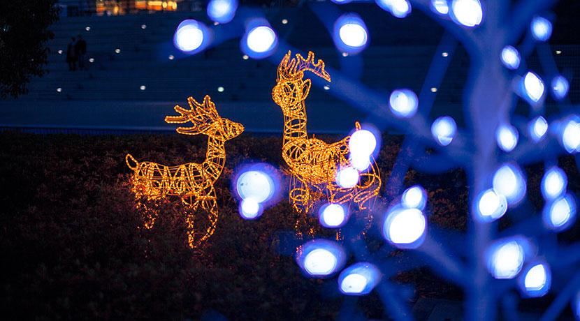 クリスマスイルミネーション、電気代がかからない。