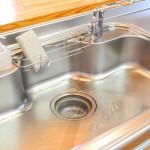 超強力なパイプ洗浄剤 ピーピースルーF(和協産業)
