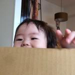 子ども専用!秘密基地 すまいるキッズハウス(森井紙器工業)