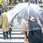 座れる傘 チェアブレラ(サンコー)