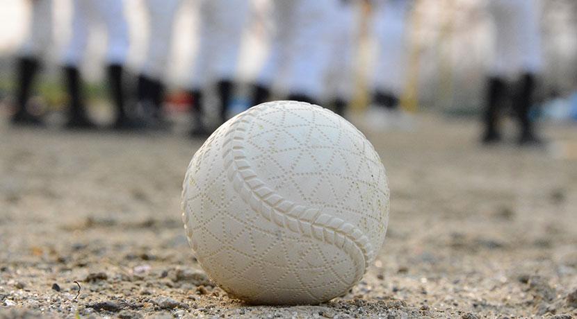 野球ボール専用ブラシ、白球ボーイ(イケモト)