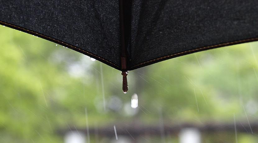 傘の常識が変わる?! 濡れた面を内側にして畳めるので、手や服が濡れない傘。