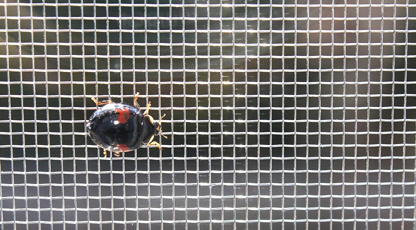 網戸に空いた穴を防ぐための補修シート、網戸の補修・修理におすすめです。