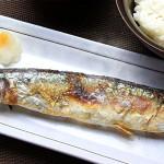 マナー魚 おはしdeおさかなパズル(アイアップ)