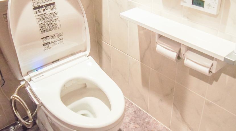 トイレの臭いをオゾンで脱臭するアイテム。