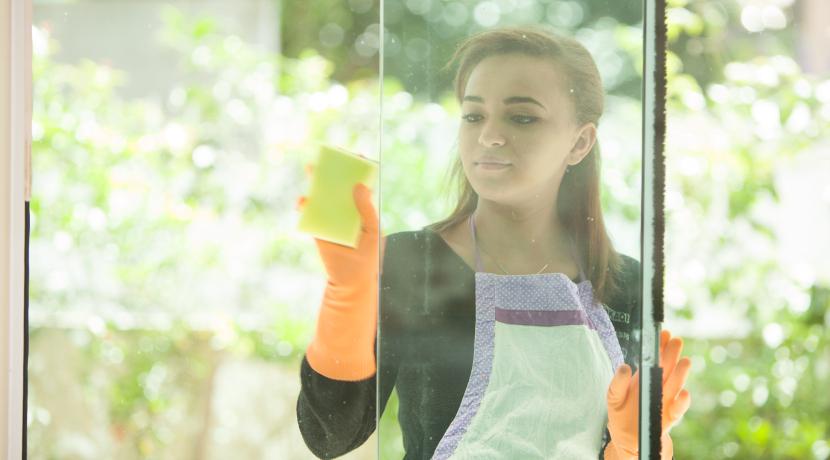 窓拭きお掃除ロボット「WINDY」(サンコー)