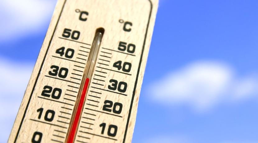 部屋の温度が上がると自動で運転を開始する扇風機、熱中症対策に有効です。