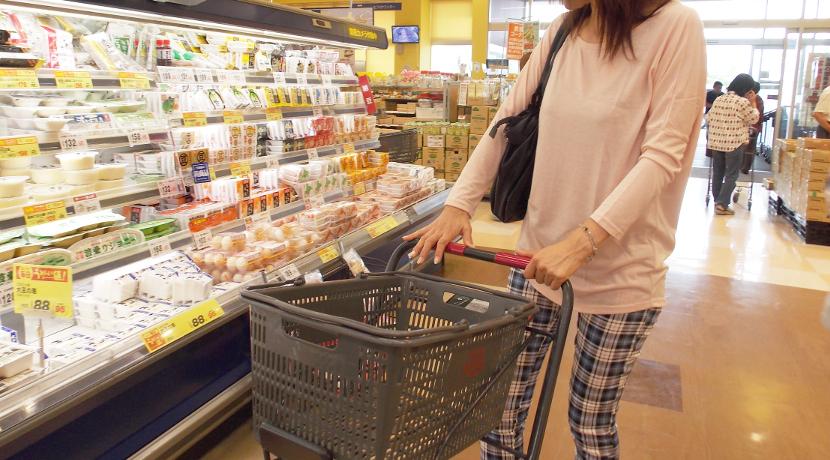 スーパーでの買い物におすすめの保冷バッグ、レジカゴのサイズの保冷バッグです。