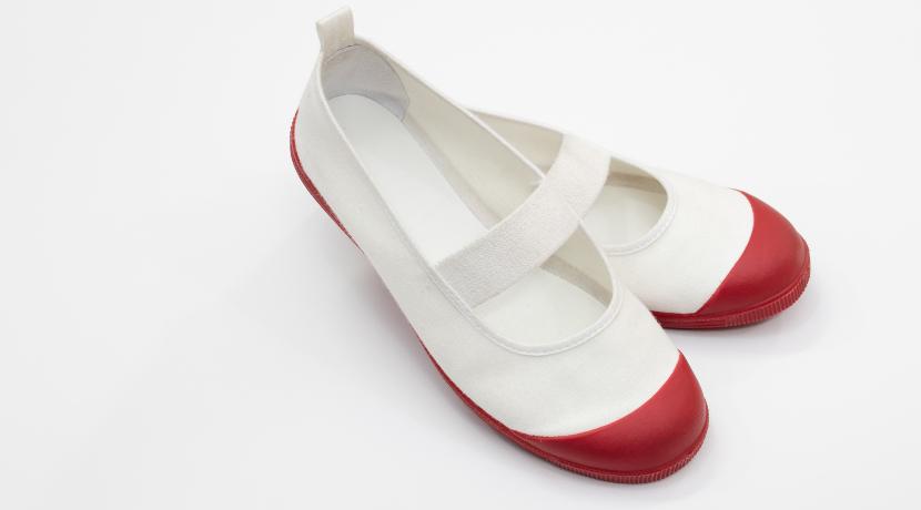 靴専用ミニ洗濯機「靴洗いま専科」(サンコー)