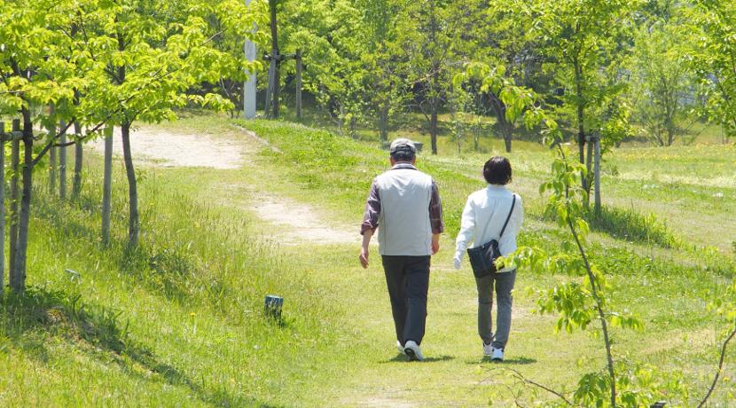 散歩の楽しみ方が増える!散歩がつまらない人向けの散歩用のビンゴ。