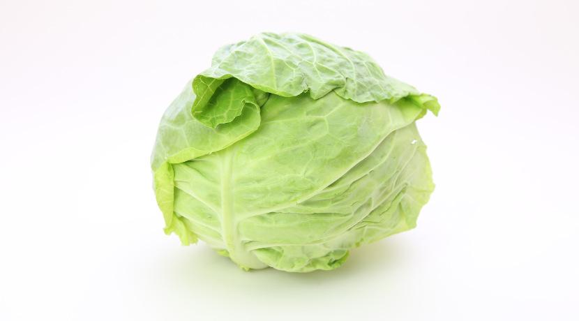 レタスが長持ち!包むだけで野菜の鮮度が保てる保存用の布。