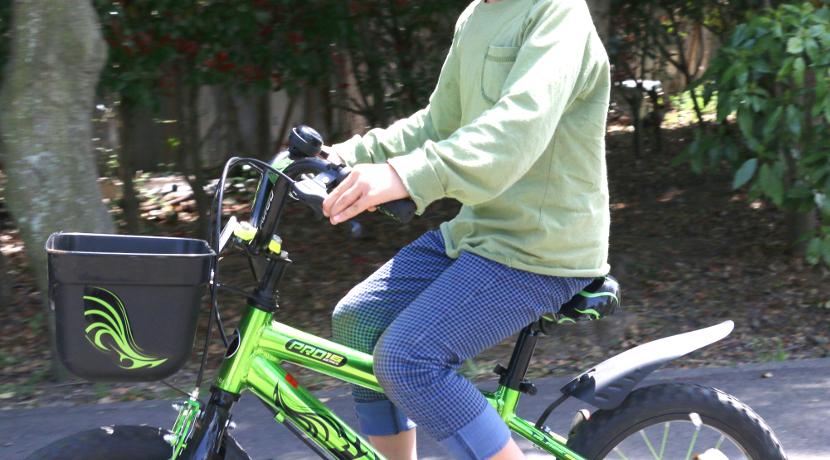 子供が早く自転車に乗れるようになるための練習グッズ、乗った際のバランス感覚が身につきます。